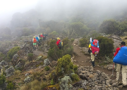 Machame to Shira Route, while Climbing Kilimanjaro